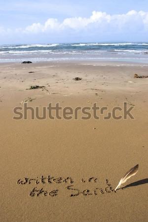 ビーチ 波 ホット 背景 夏 ストックフォト © morrbyte