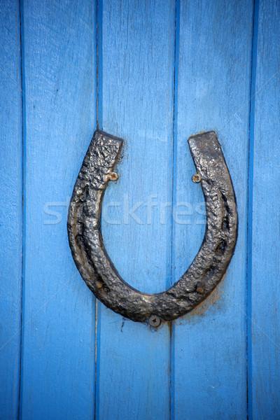黒 馬蹄 青 ドア 木製 馬 ストックフォト © morrbyte