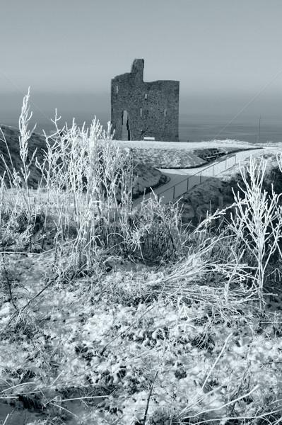 christmasy view of ballybunion castle ruin Stock photo © morrbyte