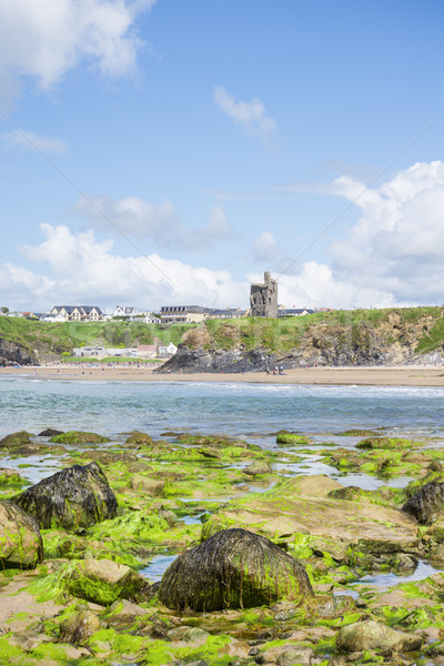 seaweed covered rocks with castle and beach Stock photo © morrbyte