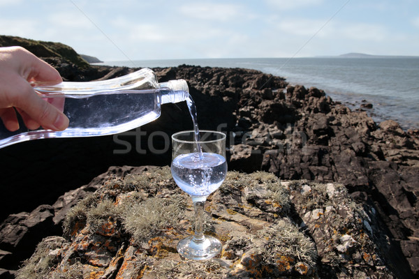 luxury drink Stock photo © morrbyte