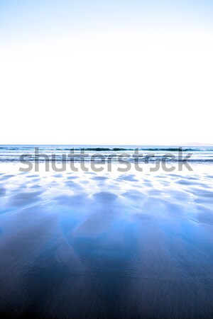 windswept winter beach view Stock photo © morrbyte