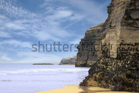 high cliffs of Ballybunion on the wild atlantic way Stock photo © morrbyte