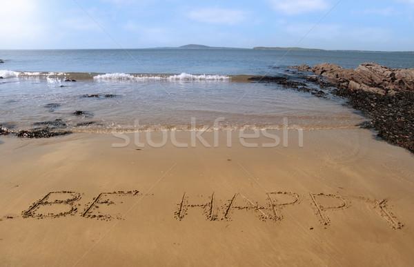 Teljesülés boldog tengerpart hullámok forró napos idő Stock fotó © morrbyte