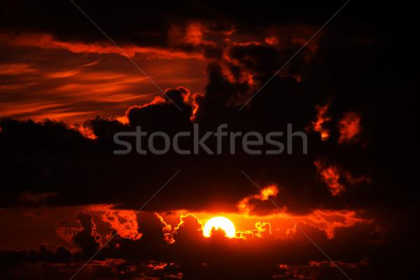 Donkere humeurig Rood zonsondergang hemel wild Stockfoto © morrbyte