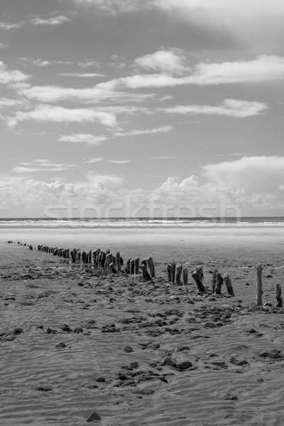 Siyah beyaz dalga ağız plaj ahşap Stok fotoğraf © morrbyte