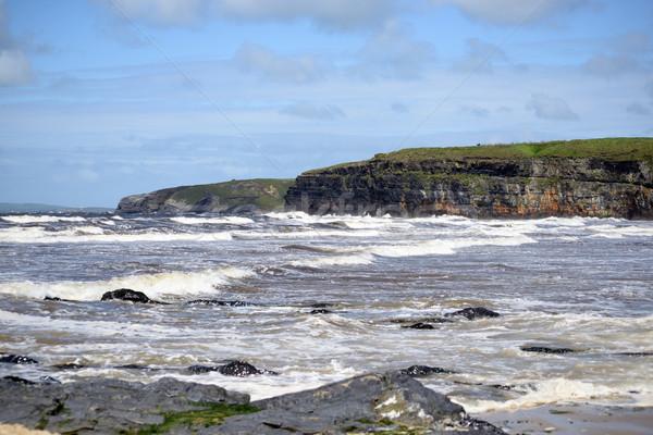 Groot golven wild manier strand Stockfoto © morrbyte