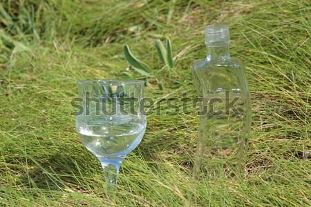 Tiszta természetes ásványvíz üveg merő víz Stock fotó © morrbyte