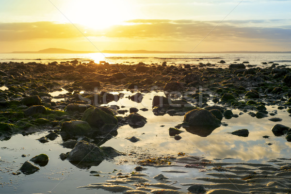 ビーチ 方法 アイルランド ストックフォト © morrbyte