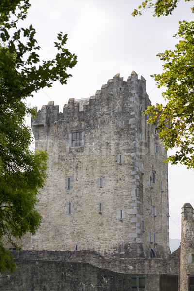 ross castle in killarney county kerry Stock photo © morrbyte