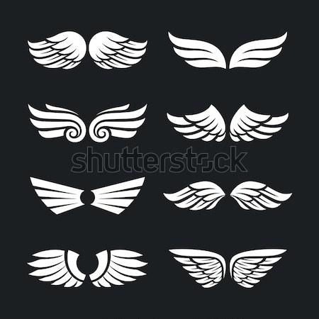 набор вектора крыльями различный изолированный темно Сток-фото © morys