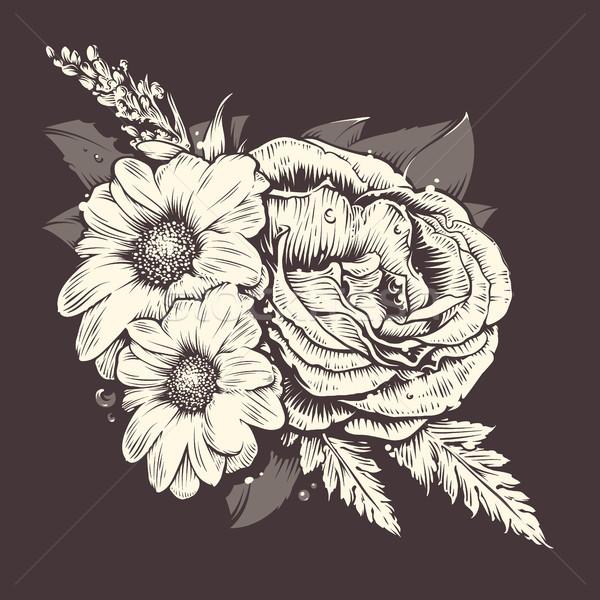 вектора цветы закрывается ромашка старомодный стиль Сток-фото © morys