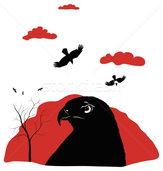 鳥 餌食 赤 ハヤブサ ストックフォト © motttive