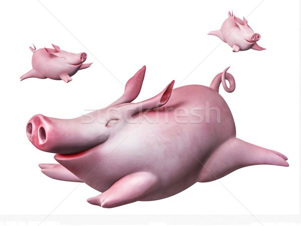 Funny flying piggies. Sky divers isolated on white Stock photo © motttive