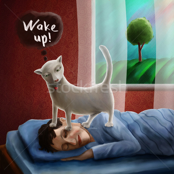 Cat wakening sleeping man in the morning Stock photo © motttive