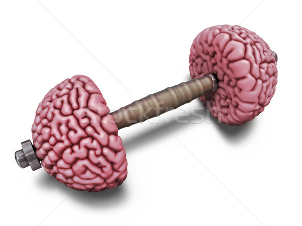 Cerveau formation illustration haltères intellectuelle fitness Photo stock © motttive