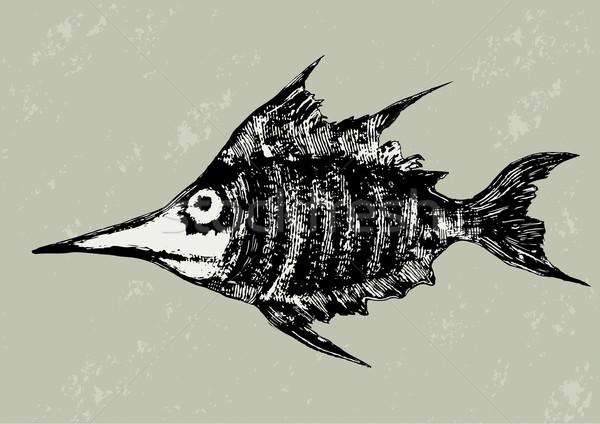 Funny peces blanco negro naturaleza mar diversión Foto stock © motttive