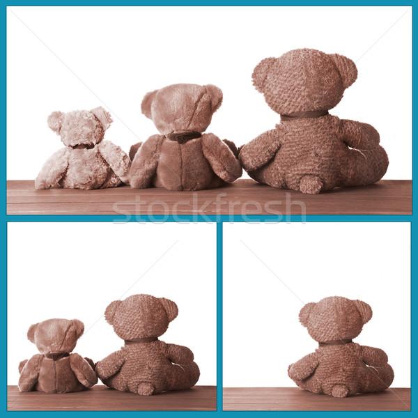 Cute мало Медведи фотография мишка Сток-фото © mpessaris