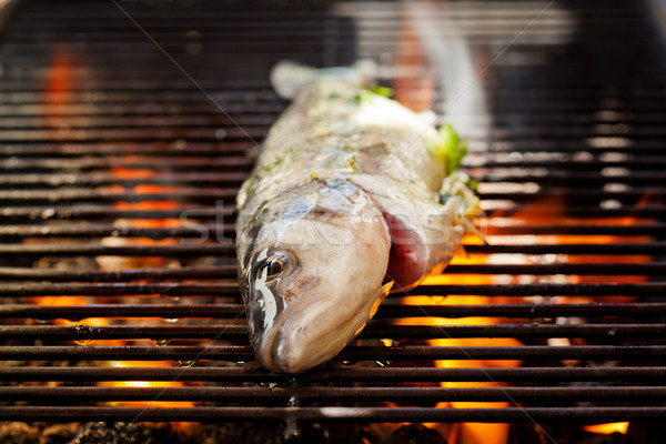 Mer basse grill photographie poissons Photo stock © mpessaris