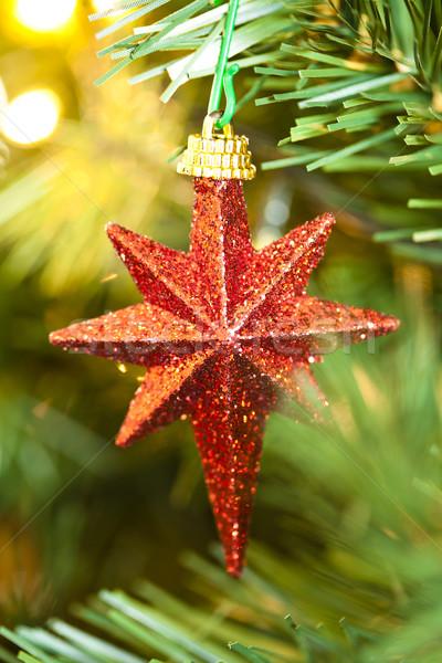 Shinny Christmas Star Stock photo © mpessaris