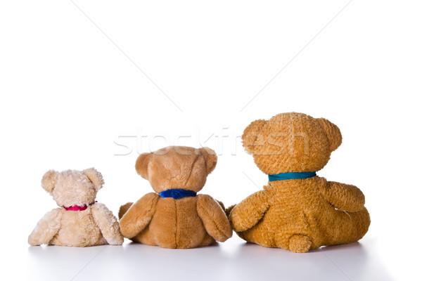 Trzy mały niedźwiedzie cute Zdjęcia stock © mpessaris