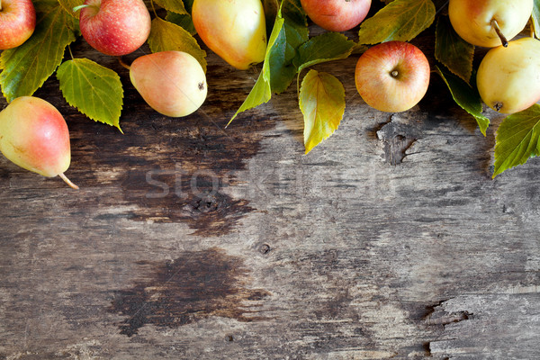 Fallen Apples And Pears Stock photo © mpessaris