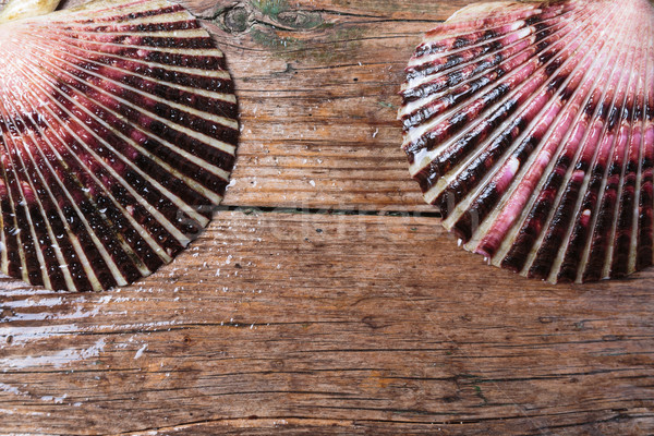 Wet scallop shells on wooden background Stock photo © mrakor