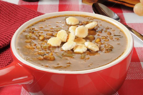 Lentil Soup Stock photo © MSPhotographic