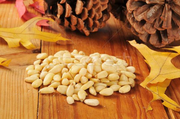 Pine nuts Stock photo © MSPhotographic