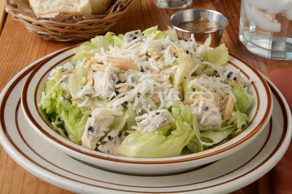 Sağlıklı tavuk salatası pirinç makarna susam Stok fotoğraf © MSPhotographic