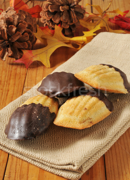 Chocolate dipped Madeleines Stock photo © MSPhotographic