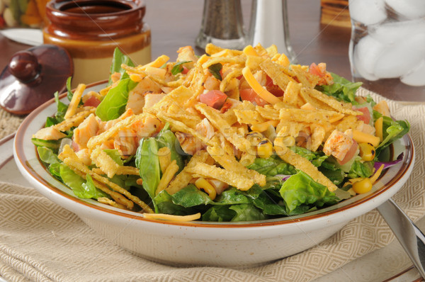 Saladeira salada tortilla tiras frango Foto stock © MSPhotographic