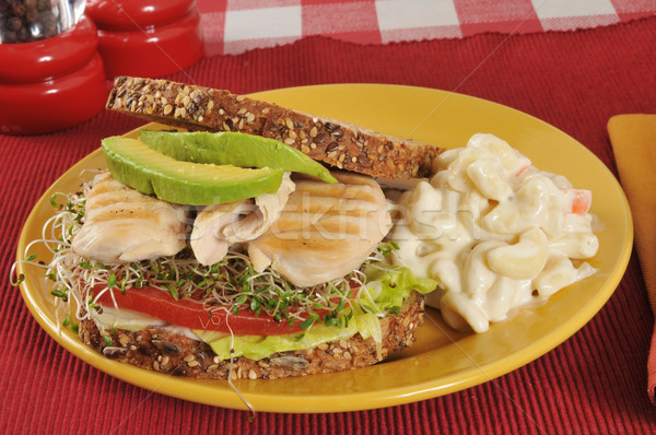 chicken and avocado sandwich Stock photo © MSPhotographic