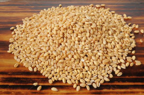 Whole wheat kernels Stock photo © MSPhotographic