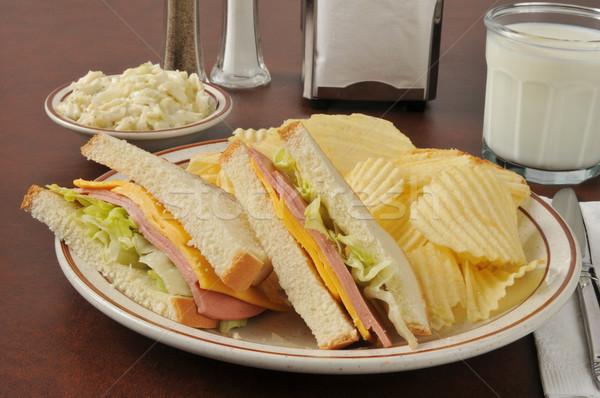 сыра сэндвич картофельные чипсы капустный салат стекла молоко Сток-фото © MSPhotographic