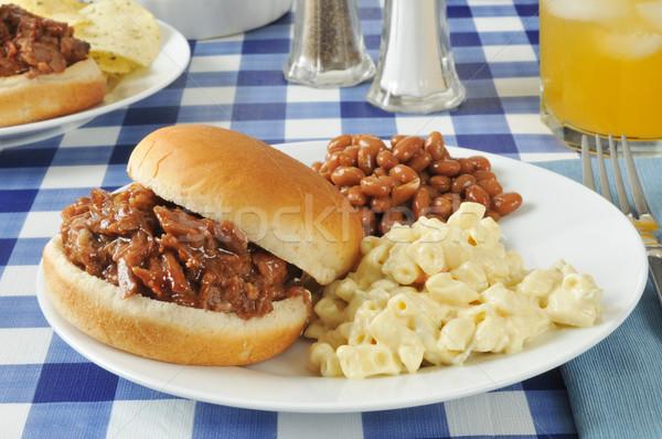 Barbecue rundvlees sandwich picknicktafel macaroni salade Stockfoto © MSPhotographic
