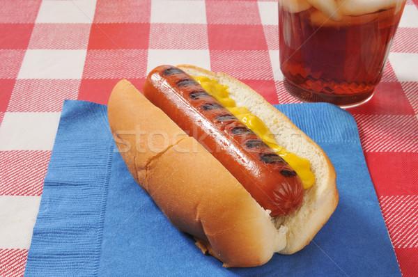 Mosterd hond picknicktafel hot dog cola drinken Stockfoto © MSPhotographic