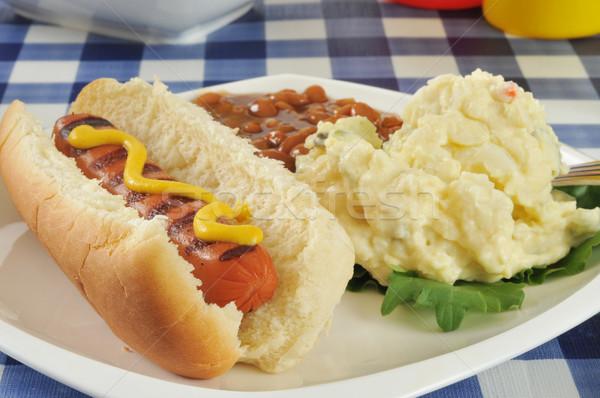 Stock fotó: Mustár · kutya · piknik · asztal · burgonyasaláta · sült · bab