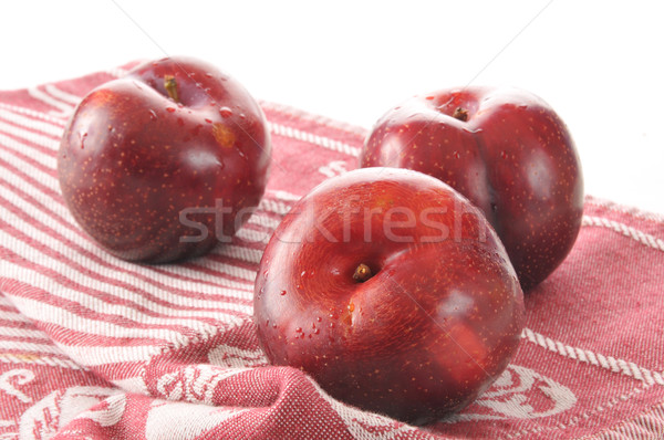 Freshly washed plums Stock photo © MSPhotographic