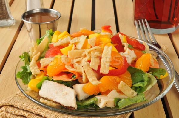 Salade tropische vruchten kip groene vruchten Stockfoto © MSPhotographic