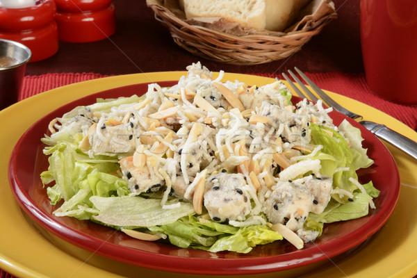 Tavuk salatası marul pirinç susam gıda Stok fotoğraf © MSPhotographic