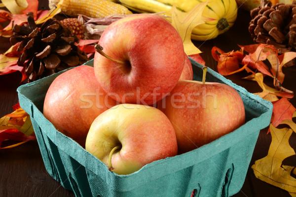 Hasat elma olgun gala sonbahar yaprakları Stok fotoğraf © MSPhotographic