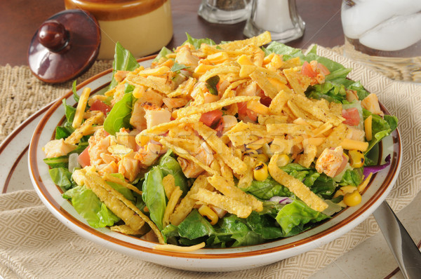 Taco salad with chicken Stock photo © MSPhotographic