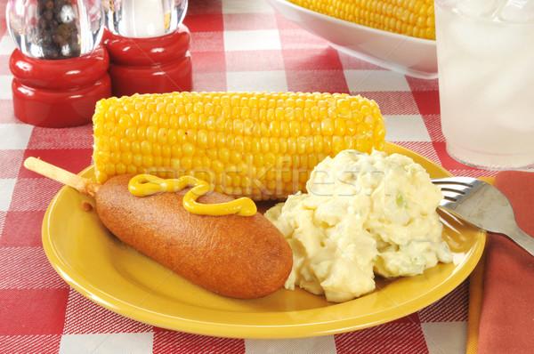 Mais hond picknicktafel mosterd aardappelsalade glas Stockfoto © MSPhotographic