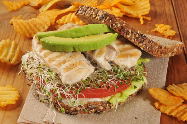Grilled chicken and sprouts sandwich Stock photo © MSPhotographic