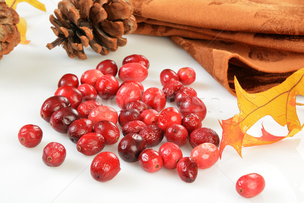 Freeze dried cranberries Stock photo © MSPhotographic