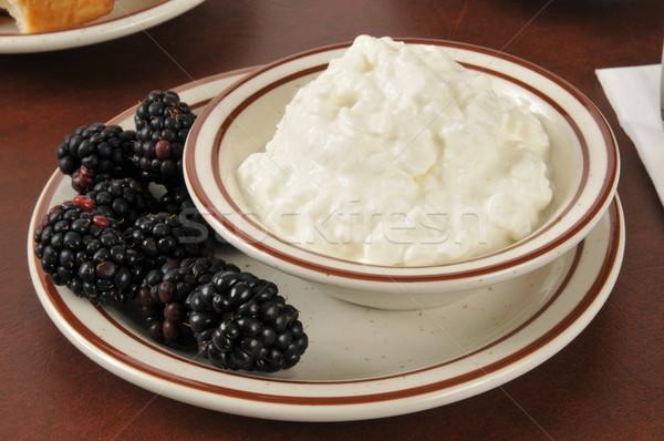 Süzme peynir taze küçük çanak meyve Stok fotoğraf © MSPhotographic