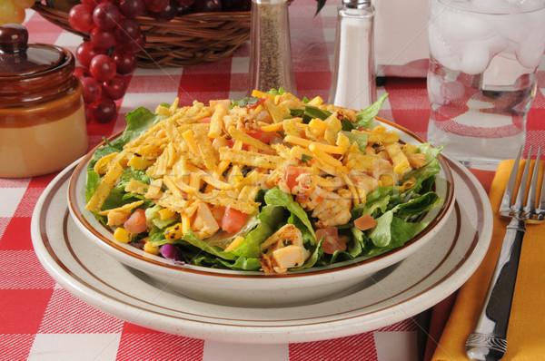 Bowl of taco salad Stock photo © MSPhotographic