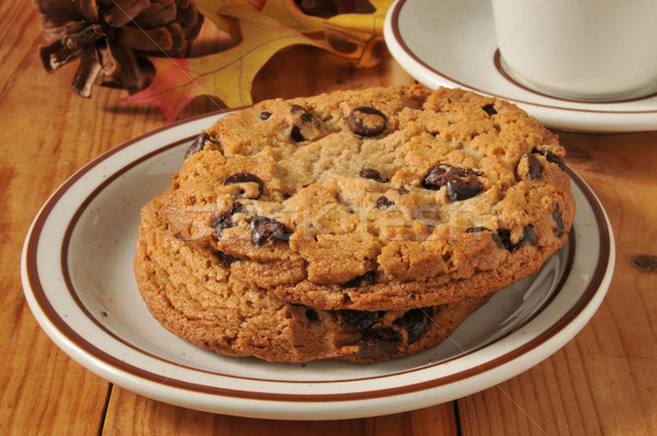 Gourmet chocolate chip cookies Stock photo © MSPhotographic