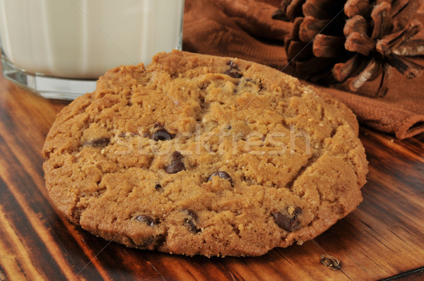 Chocolate chip cookies Stock photo © MSPhotographic